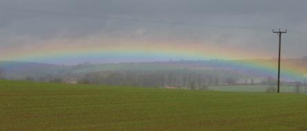 rainbowMarch2016